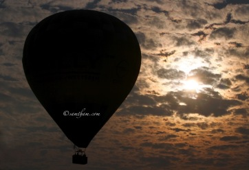 Beautiful silhouette of the hot air balloon as the sun slowly rise...